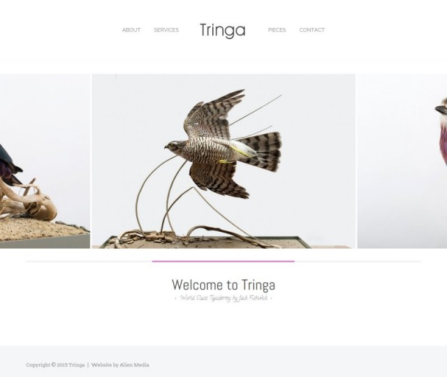 Tringa - NRD Media website design Chorley